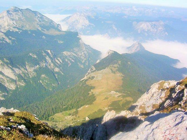 Dogovorena velika akcija pošumljavanja NP Sutjeska - Vlada cilja na razvoj parka kao evropske destinacije