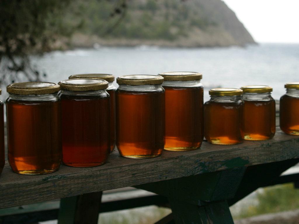 Pčelari se udružili i postigli rekordan izvoz i cenu meda
