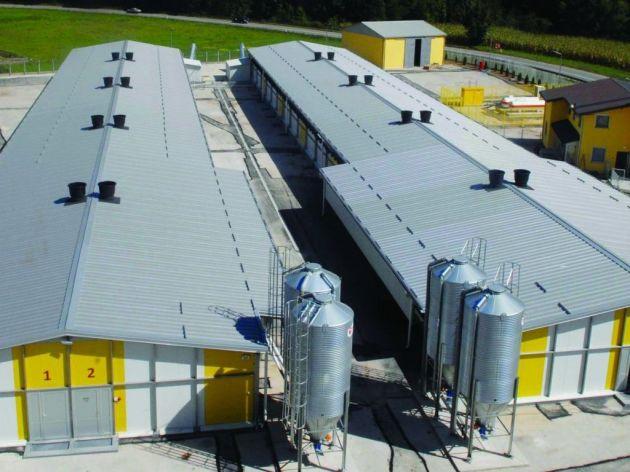 Farma pilenki Mileks planira širenje proizvodnje i zauzimanje liderske pozicije u peradarstvu