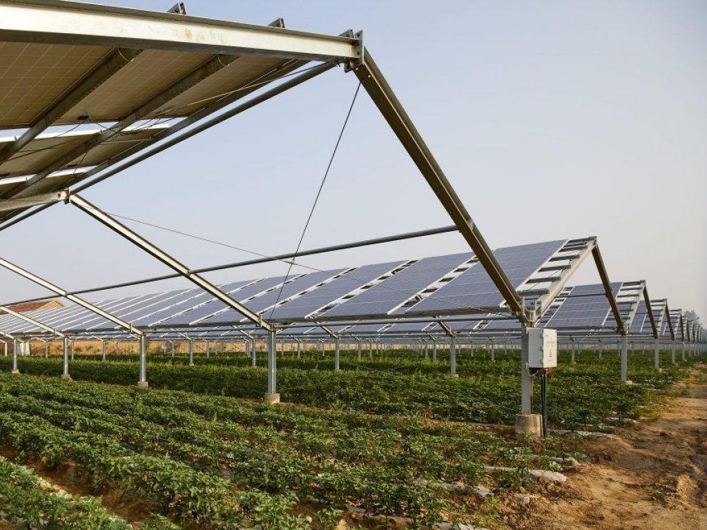 Fintel Energija i MK Group pokreću prvi agroenergetski projekat na Balkanu - Investicija u Kuli vredna 340 mil EUR
