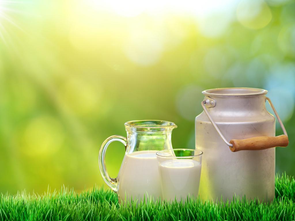 Tuzlanska zadruga Milk Land planira povećanje proizvodnje svježeg mlijeka