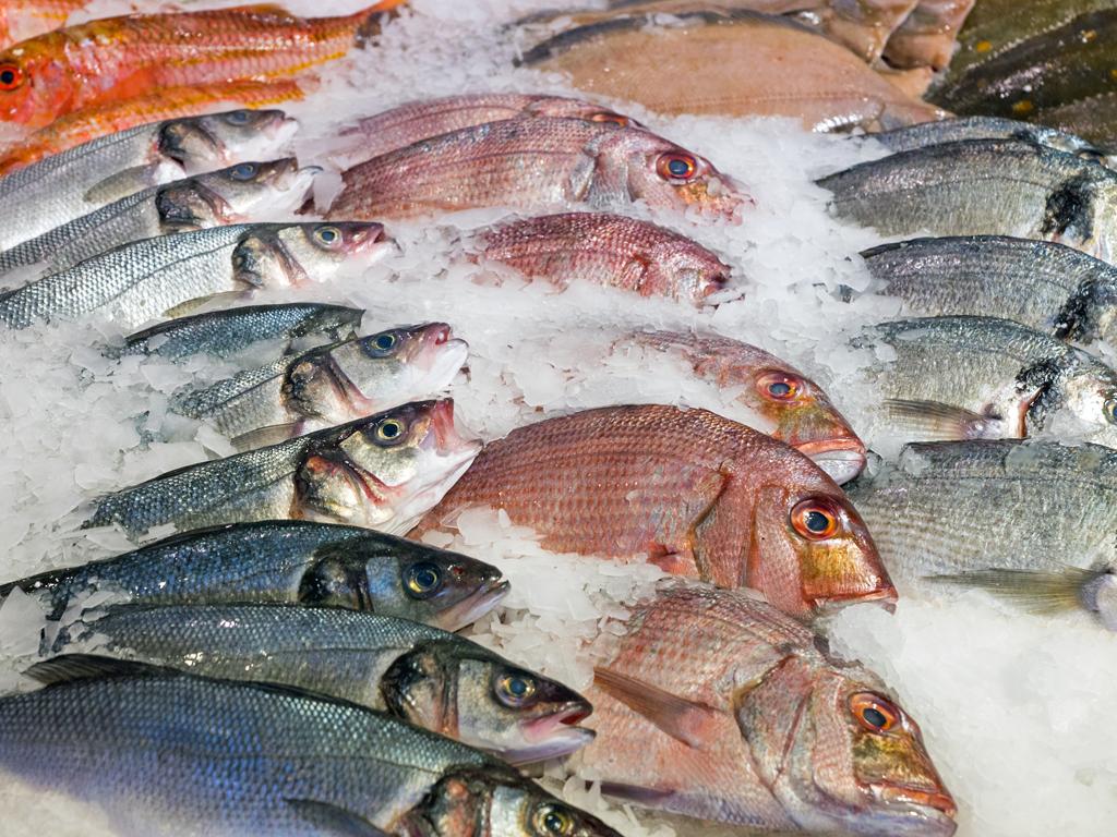 Škotski ribari obustavili izvoz robe na tržište EU