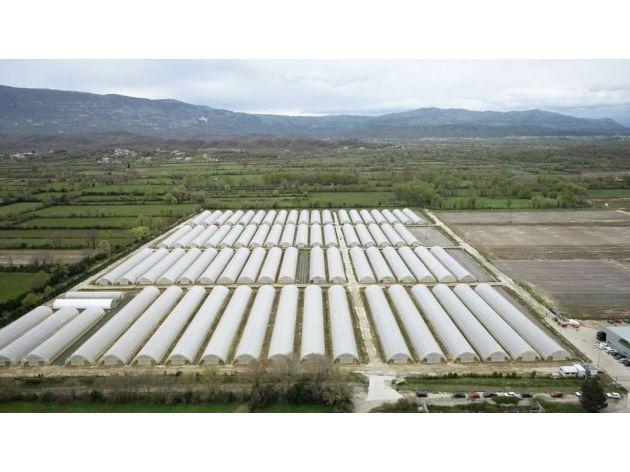 Crna Gora ima ogroman potencijal za razvoj agrara i stočarstva - Imanje Naša bašta uspješno održava kontinuitet u proizvodnji, u planu i osvajanje regionalnog tržišta