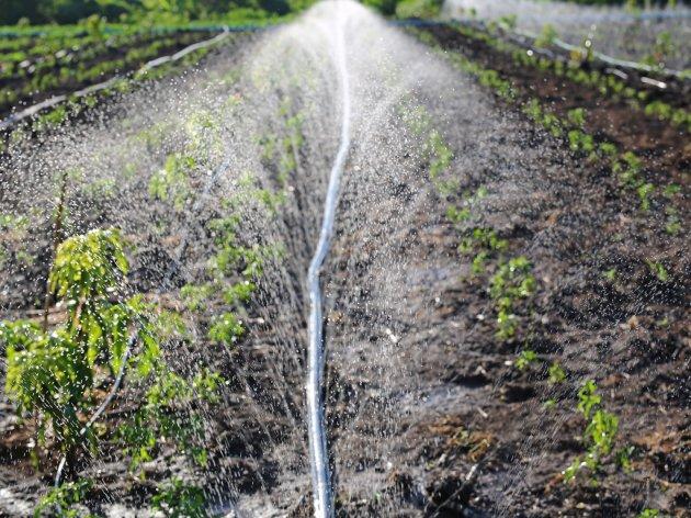 Nastavlja se izgradnja sistema za navodnjavanje u Semberiji - Vrijednost druge faze 6 mil KM