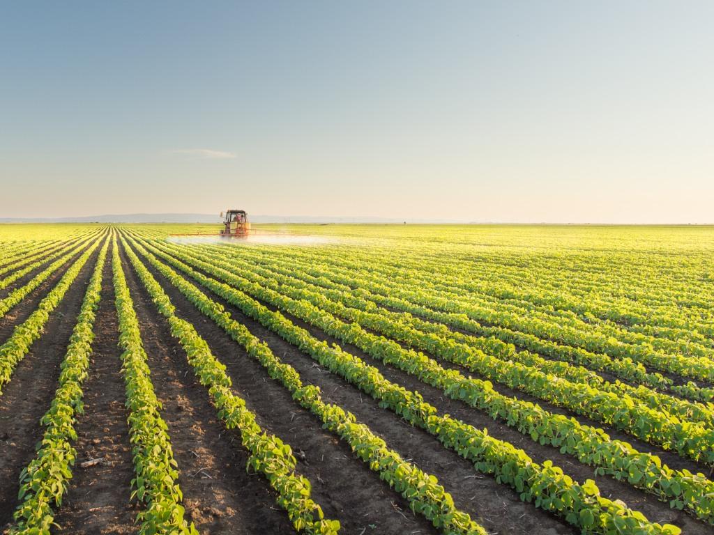 U 56 opština i gradova pod zakupom rekordna površina državnog poljoprivrednog zemljišta