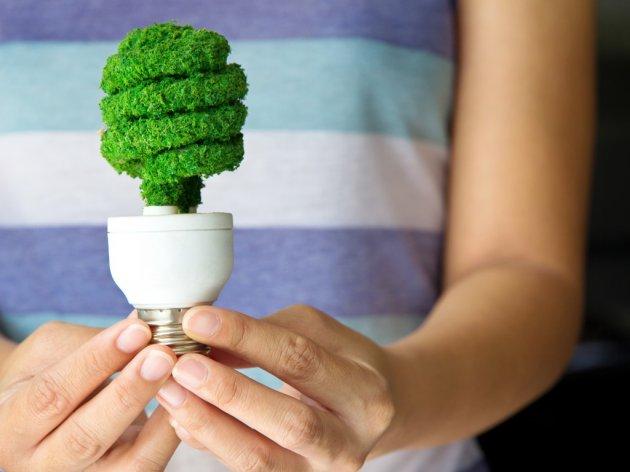 Ontario's Innovative Sandbox Seeks Energy-Saving Ideas