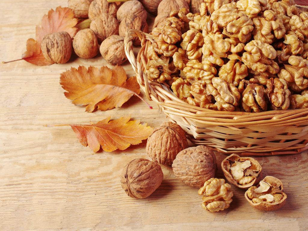 Proizvodnja oraha sve popularnija na Zapadu - Intenzivni zasadi donose bolje prinose