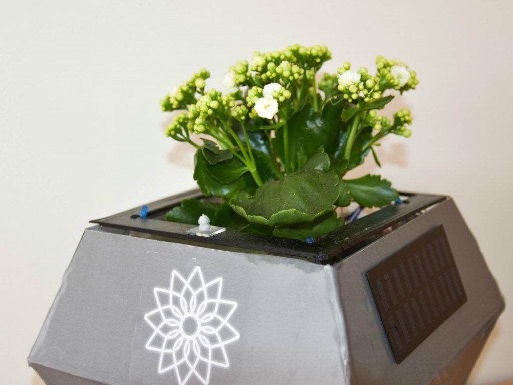 Startap Orhis osvojio prvo mjesto u programu BoostMeUp - Automatizovana pametna saksija za kvalitetniji, lakši i zanimljiviji uzgoj biljke