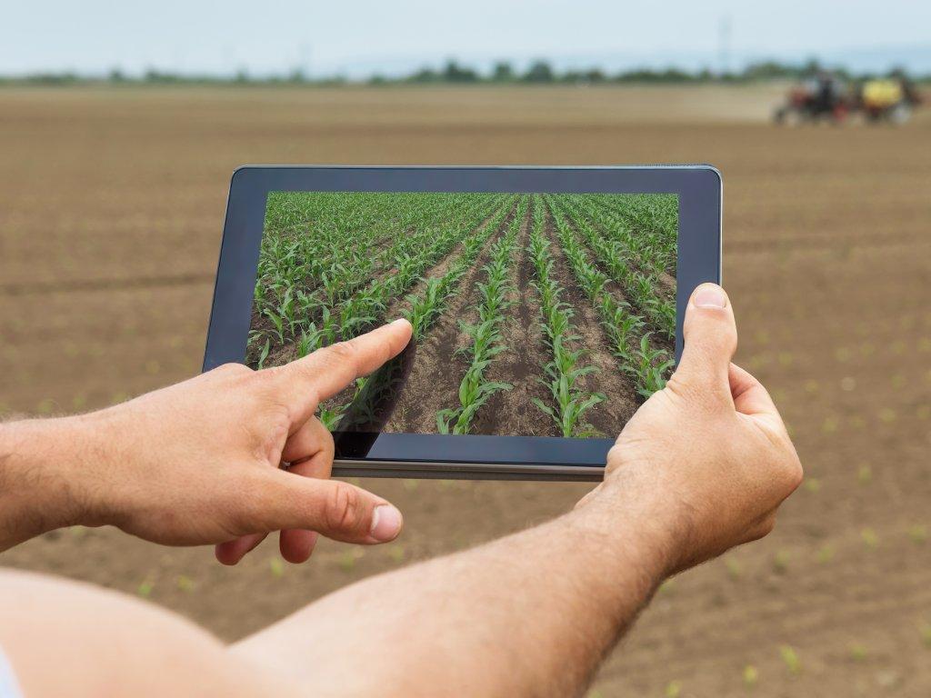 Počela analiza zemljišta pomoću aplikacije - Manji troškovi, veći prinos