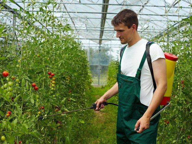 Bijelo Polje za razvoj poljoprivrede izdvaja 250 hiljada eura
