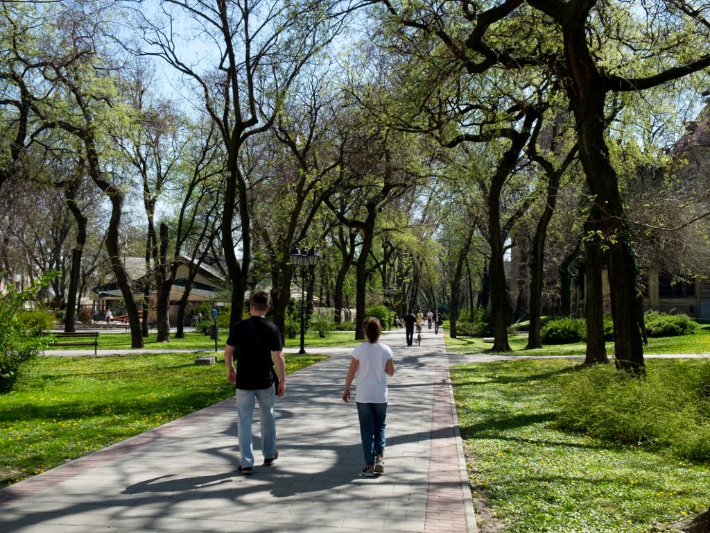 Počinje uređenje Kameničkog parka u Novom Sadu - Uskoro novi kod Detelinare