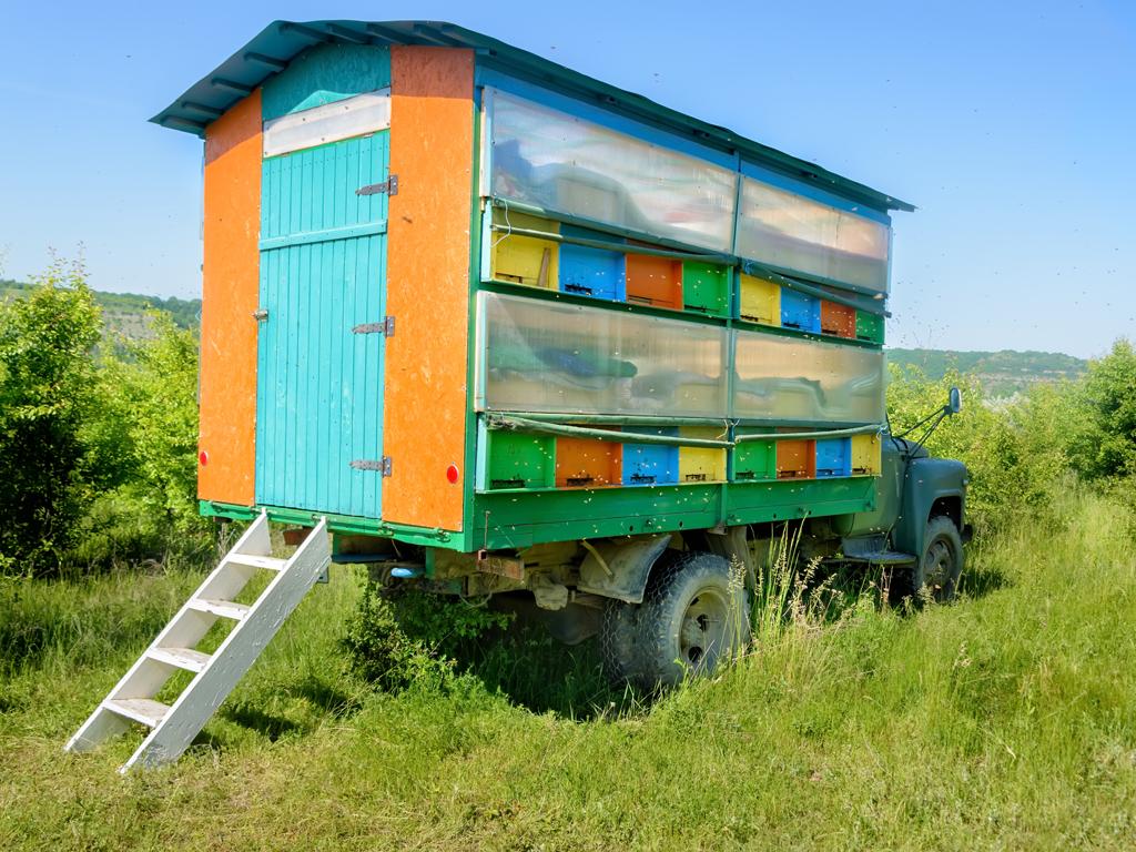 Za početak pčelarenja potrebno 427 EUR