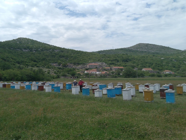 Kooperacija sa Agrarnim fondom - Trebinjski pčelari i voćari imaju šansu za siguran plasman proizvoda
