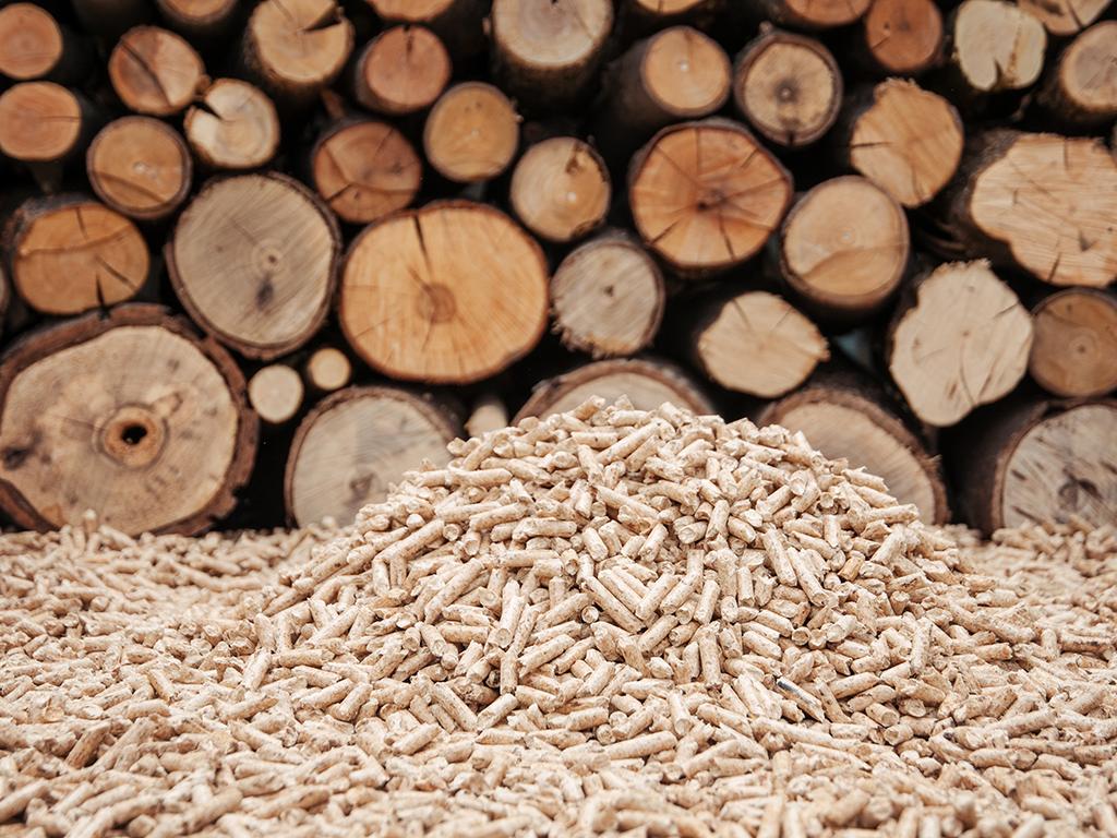 FBiH ukinula obavezu kontrole kvaliteta drvnih sortimenata pri izvozu