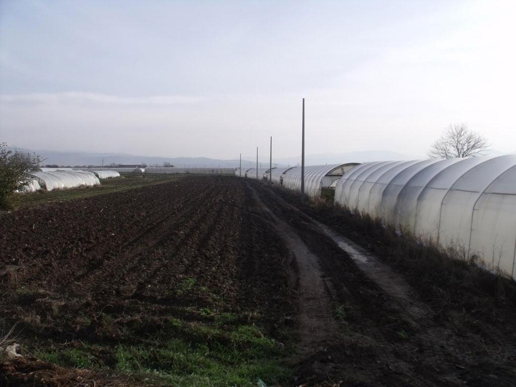 Završena elektrifikacija polja u leskovačkim selima - Povrtarima ušteda i do 7.000 EUR godišnje