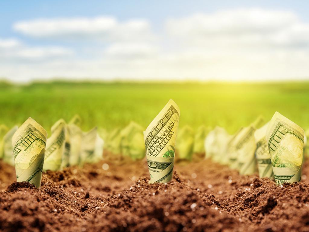 Uz pomoć kredita do novog tržišta za poljoprivrednike i prerađivače - Kriza je donela manjak konkurencije, ali i potražnje