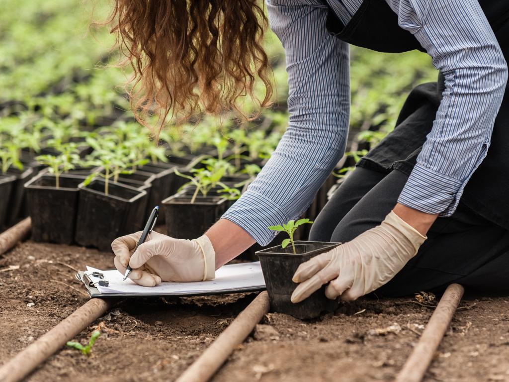 Ninići iz Novog Grada povadili 2.500 sadnica voća kako bi ih spasili od poplava i ponovo posadili
