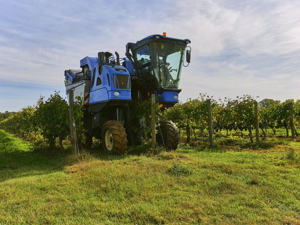FBiH ulaže 10 mil KM u modernizaciju poljoprivrede