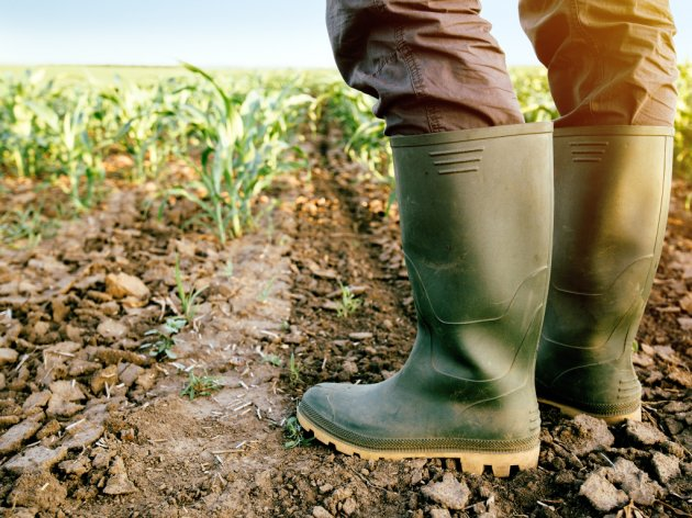 Ministarstvo najavilo zapošljavanje 100 inspektora u poljoprivredi