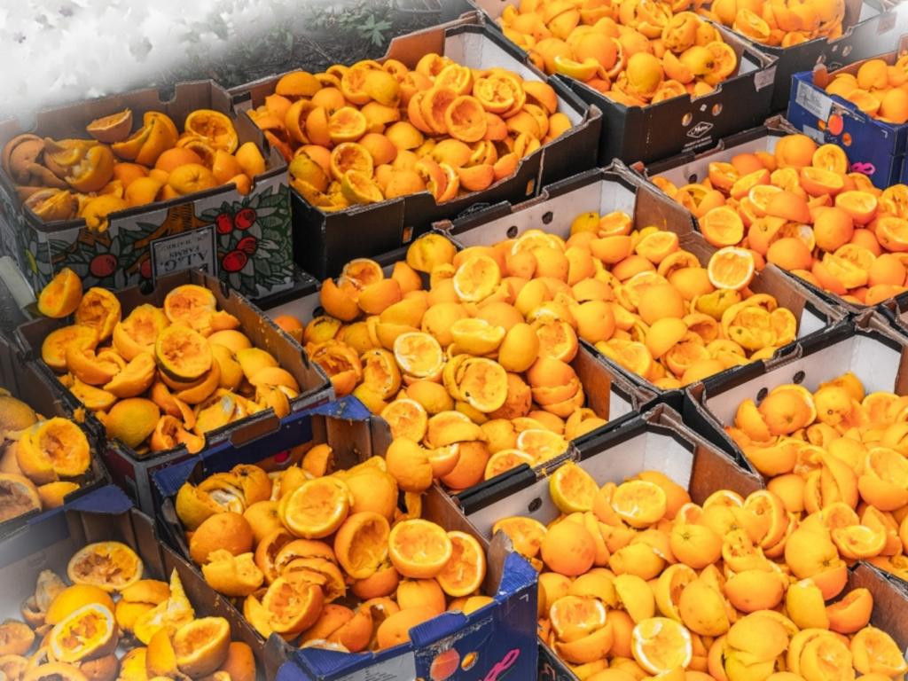Kora od pomorandže rješenje za izvlačenje dragocenih metala iz upotrebljenih baterija