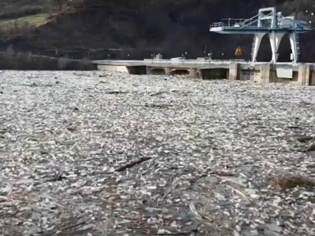 Dogovoreno hitno čišćenje Potpećkog jezera - Ozbiljno ugrožena životna sredina