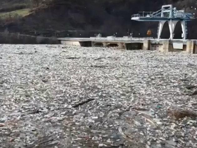 Postavljanje brana i rečnih pregrada za rešenje problema plutajućeg otpada na Limu