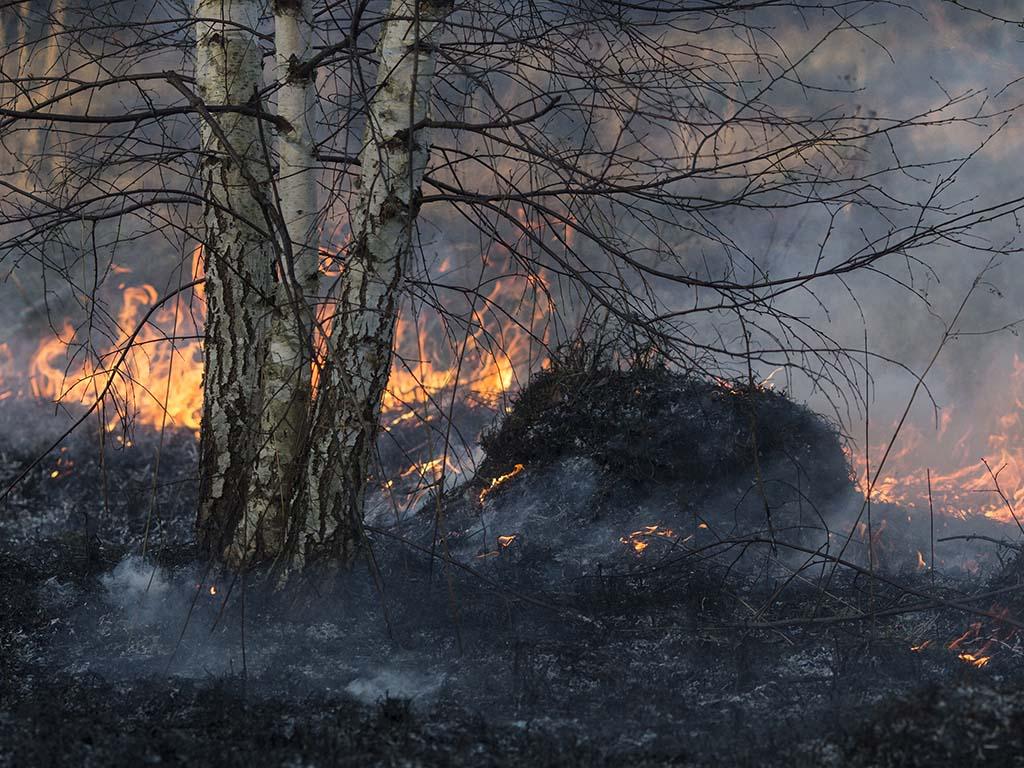Srbija uputila pomoć Republici Srpskoj za gašenje požara iznad Višegrada
