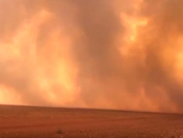 Požari u Amazoniji - Najveća prašuma na svijetu u plamenu (VIDEO)
