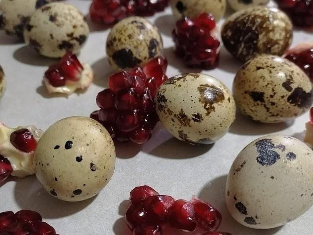 Prepeličja jaja sve popularnija - Minimalna ulaganja do 1.000 EUR, povrat investicije za pola godine (FOTO)