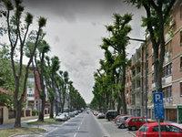 Radnička ulica u Novom Sadu najprestižnija lokacija za život?