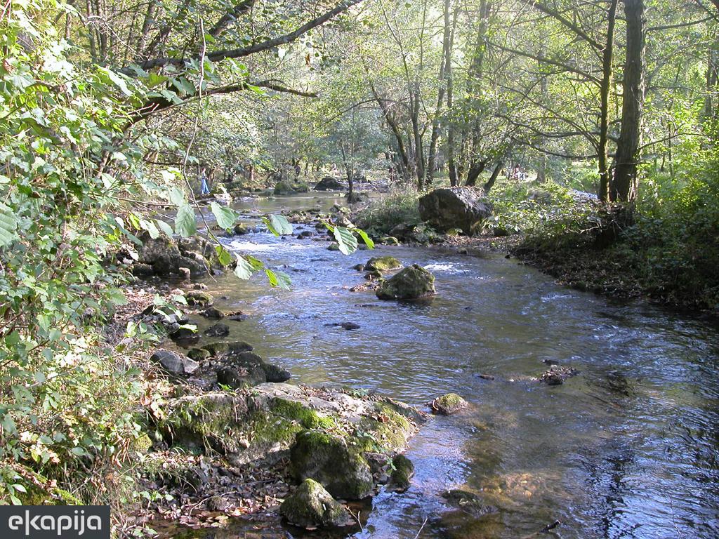 """Počinje velika ekološka akcija """"Očistimo reke Srbije"""""""