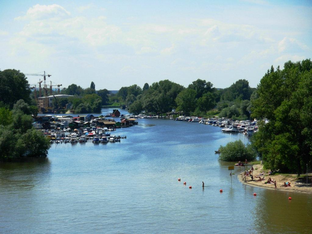 Dunavski NS Market biće održan na Ribarskom ostrvu u Novom Sadu