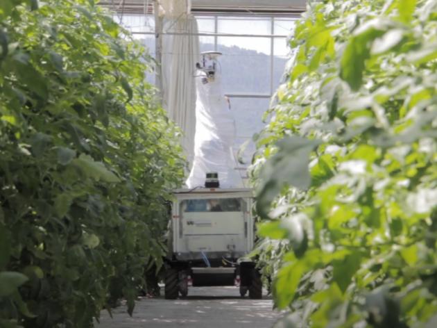 Češki naučnici razvili robota koji prepoznaje insekte i ciljano ih uništava (VIDEO)