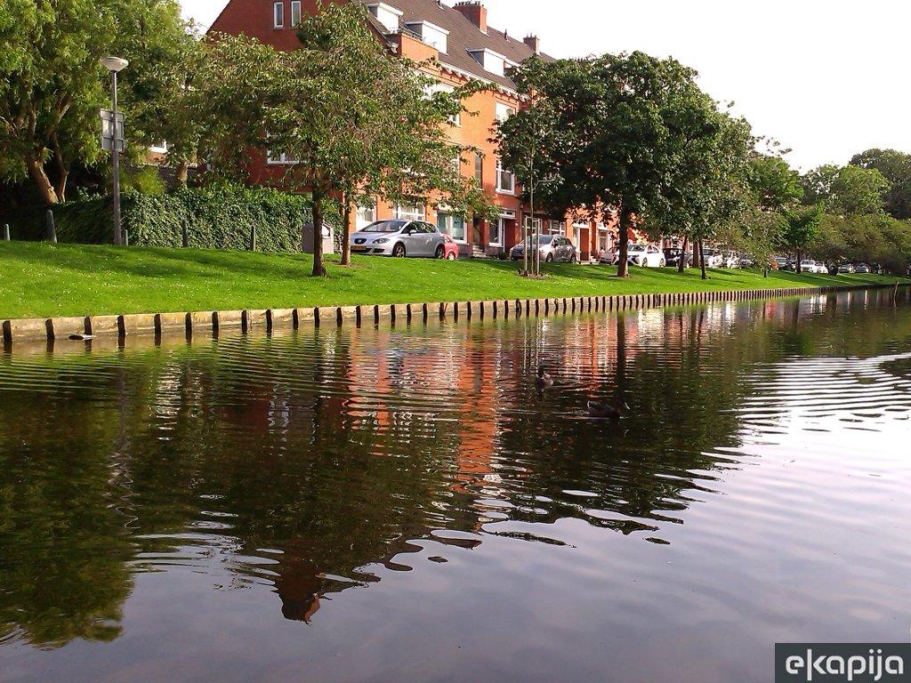 Isplanirajte savršen pješački obilazak Roterdama
