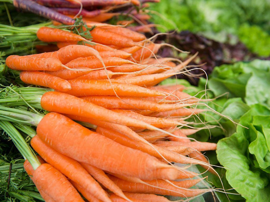 Promet šargarepe porastao za 70% - Dugo se čuva i može da se prodaje i tokom zime