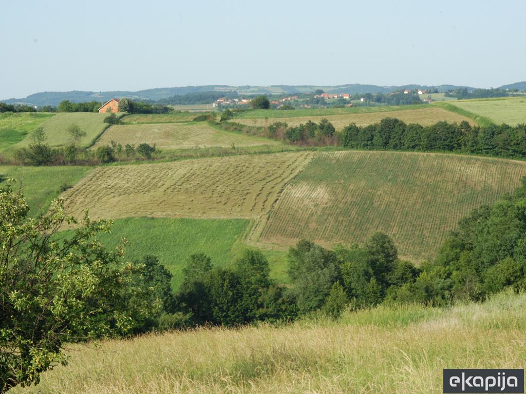 Identifikacija napuštenog zemljišta u Aleksincu, Aleksandrovcu, Smederevu i Beočinu - Prilika za potencijalne investitore