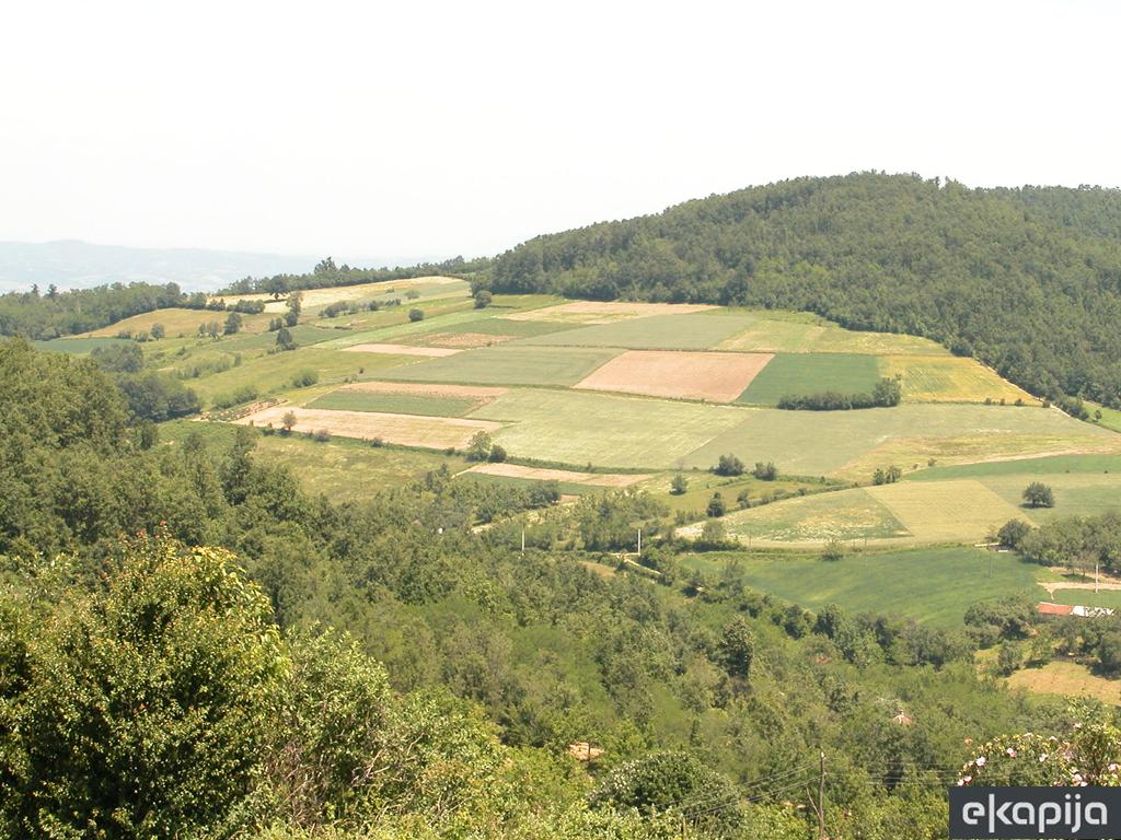 U Zrenjaninu zakup hektara zemlje po početnoj ceni od 800 do 20.000 dinara