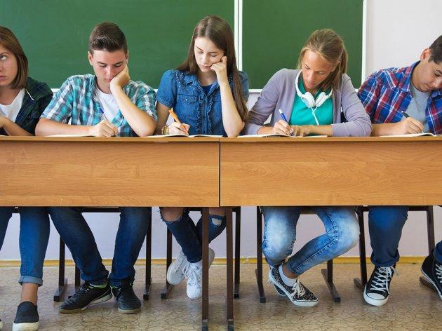 Vojvodina daje milion dinara za obrazovanje srednjoškolaca o zadrugarstvu - Konkurs otvoren do 24. septembra