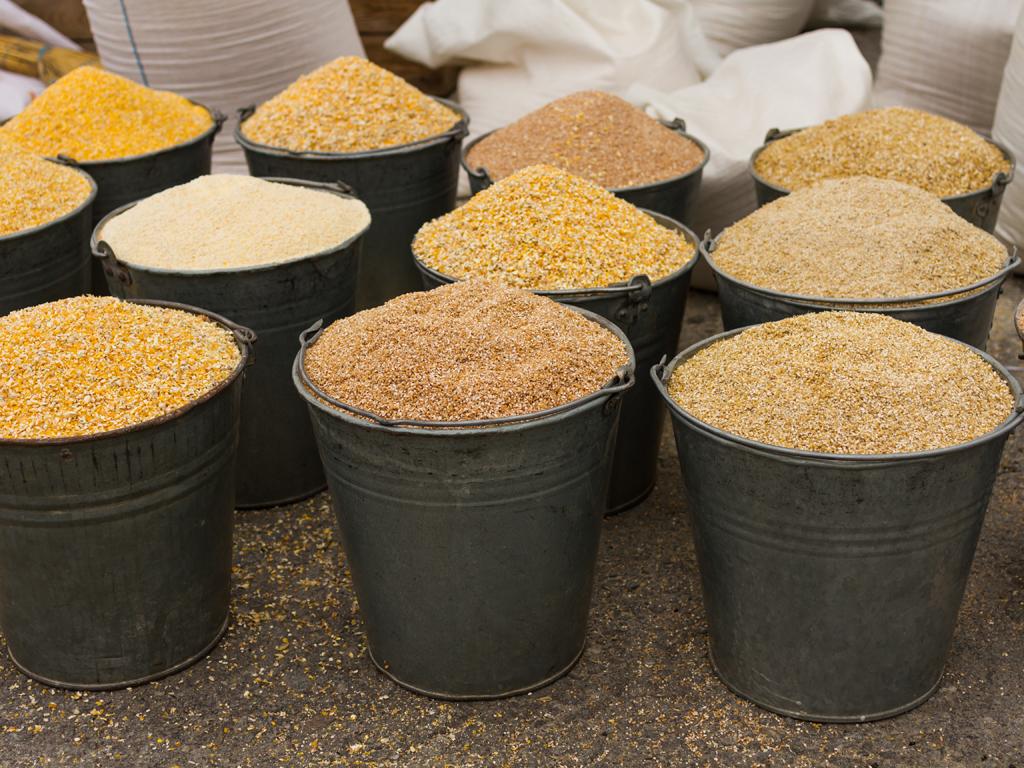 Al Dahra planira gradnju fabrike za preradu stočne hrane u Kovilovu