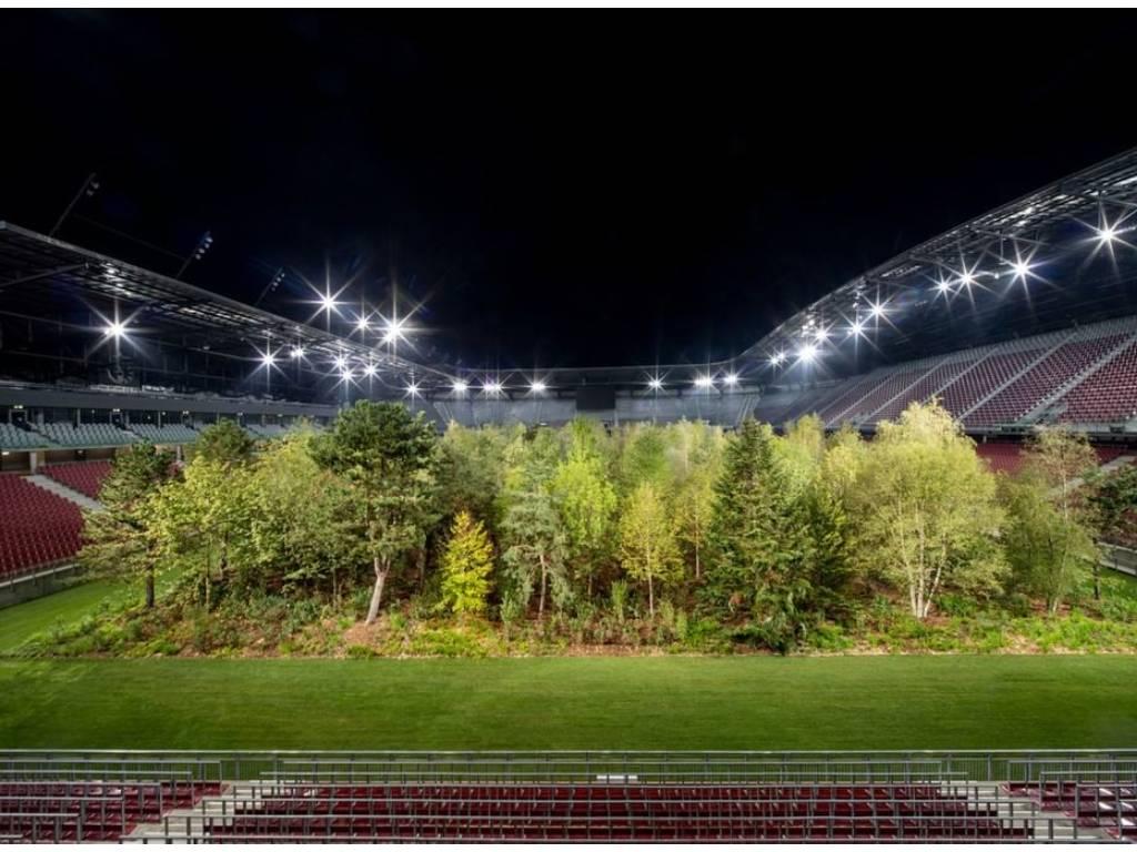 Kako je šuma nikla na fudbalskom stadionu u Austriji