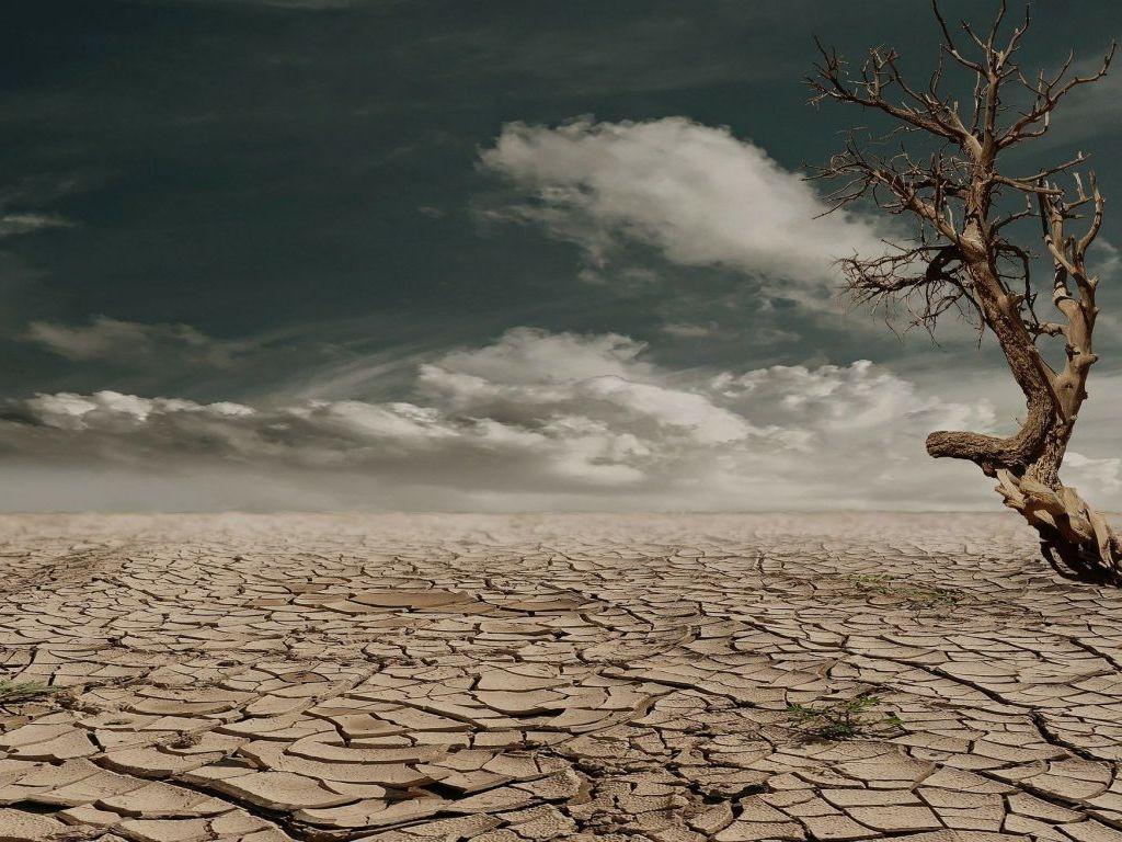 Naučnici upozoravaju da bi od 2100. ljeta mogla da traju pola godine, a zime svega dva mjeseca