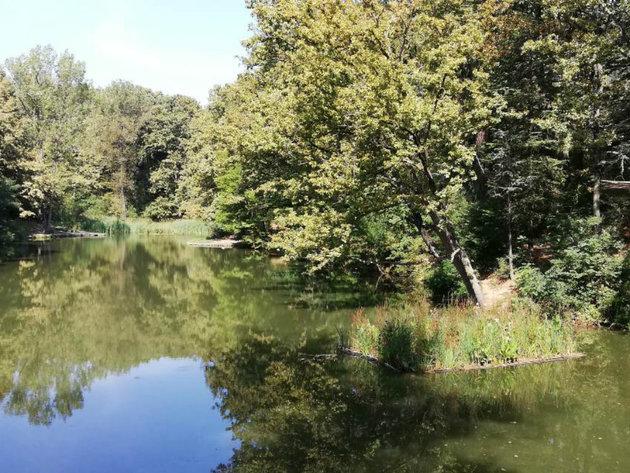Beograd će biti bogatiji za 8 hektara zelenih površina - U toku revitalizacija jezera Trešnja