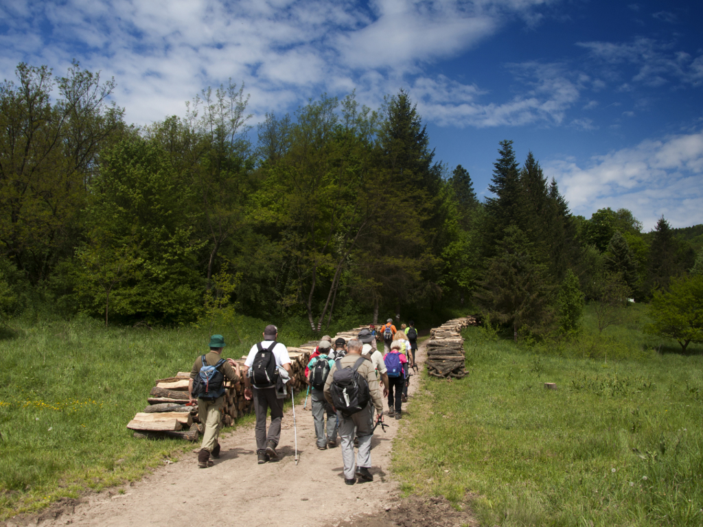 Utabane staze dovode turiste - Srbija deo dve evropske pešačke rute