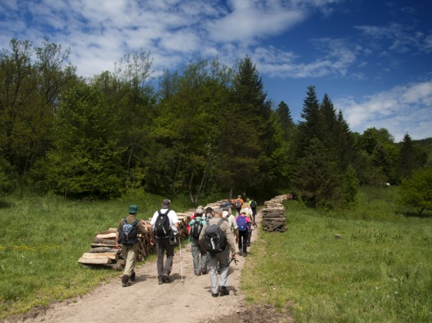 Bogata regionalna ponuda na sajmu turizma i ekologije u Lukavcu