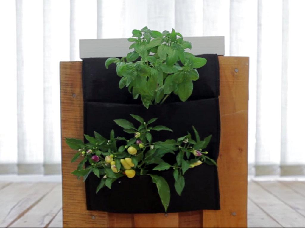 UrbiGo - pametna bašta u kojoj gajite biljke pomoću aplikacije