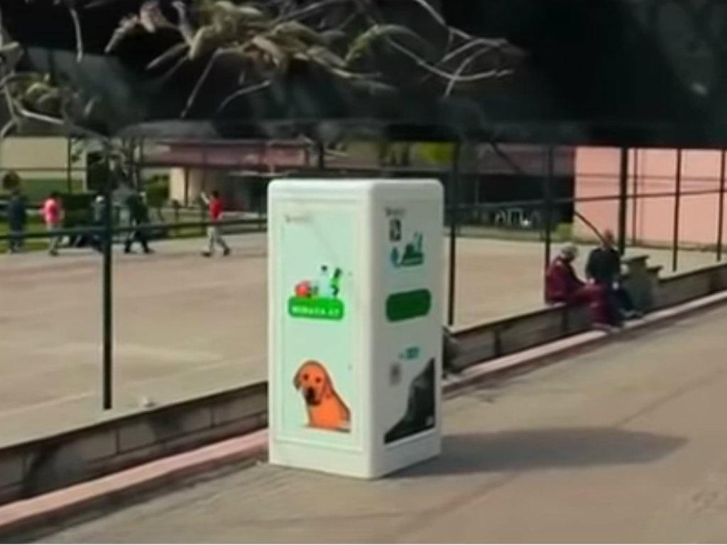 Otpaci pretvoreni u hranu za napuštene životinje - Turci osmislili neobičan uređaj za reciklažu (VIDEO)