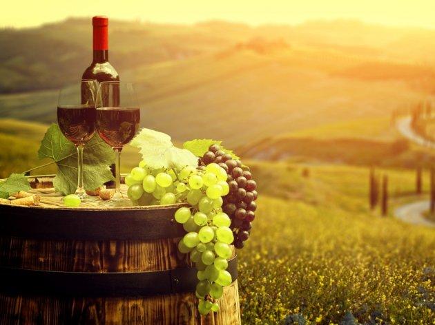 Kako promovisati male vinarije?