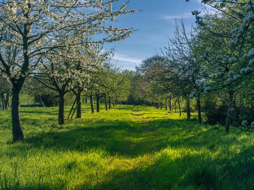 Četiri generacije Glišića opstaju na selu i razvijaju poljoprivredu