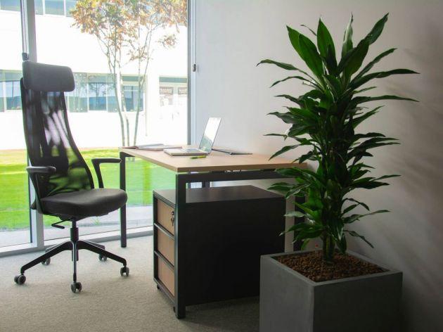 Kancelarije su prirodno osvetljene
