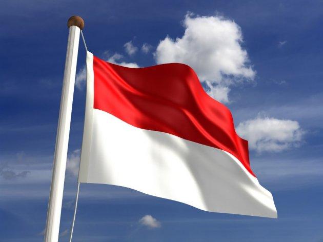 Indonezija će izgraditi novi glavni grad na ostrvu Borneu